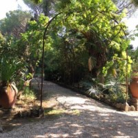 Villa for rent in zone Grottarossa